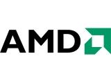 절망의 구렁텅이에 빠져있는 AMD, 바닥은 어디인가?