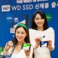 샌디스크 합병 후 첫 일반 소비자용 SSD,WD 블루/ 그린 SSD 시리즈 출시