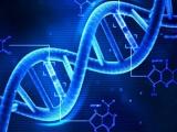 DNA를 데이터 스토리지로 사용하는 연구 진행 중