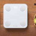 윈마이 미니2 스마트 체중계 11번가 국내 첫 런칭
