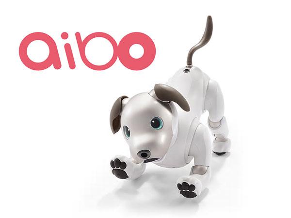 더 귀여운 모습으로 돌아온 로봇 강아지, 소니 아이보(aibo)