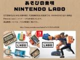 닌텐도 스위치로 체감형 게임 상자, 닌텐도 라보 발표