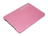 봄 향기 풍기는 핑크 컬러 SSD, 컬러풀 SL300 160G Spring