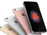 아이폰 SE2로 추정되는 기기, EEC 인증 목록에서 발견