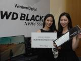 고성능 게이밍 SSD, WD 블랙 3D NVMe SSD 출시