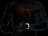 애플워치, 국내에서도 심전도 측정 및 부정맥 감지 기능 지원
